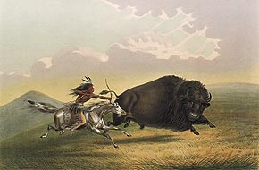La chasse au buffleGeorge CatlinNorth American Indian Portfolio. Hunting Scenes and Amusements of the Rocky Mountains and Prairies of America. New York, 1845