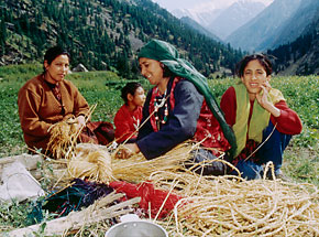 Preparing lambchua grass for making kapulas, shoes made by Ladakh women in September and October.Photograph by Rajiv Roy
