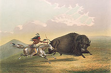 Buffalo Hunt, Chase, 1845George CatlinYale Collection of Western Americana, Beinecke Rare Book and Manuscript Library