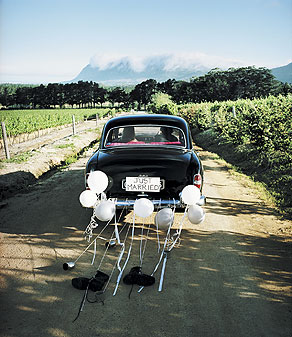 Photograph of a newly-wed couple driving car along dirt road, rear view.